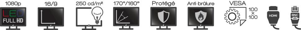 GV24 Ecran iPure 24'' Videosurveillance Protégé